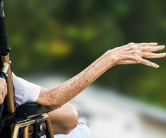 curso trastornos neurodegenerativos ancianos essscan