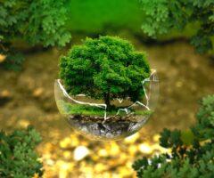 Técnicos Superiores en Salud Ambiental