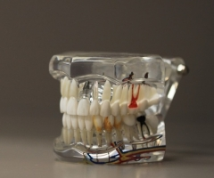 Técnicos Superiores en Protesis Dentales
