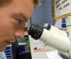 Técnicos Superiores en Anatomía Patológica y Citología