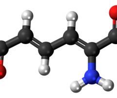 metabolismo-836134__340