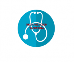 Organizacion sanitaria2