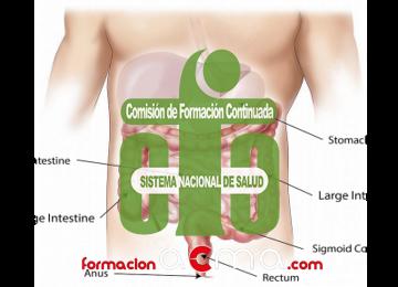 Principales trastornos digestivos