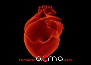 Atención en alteraciones del sistema cardiovascular